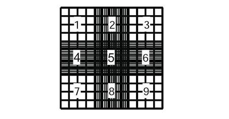Jedna z dwóch komór zliczeniowych w udoskonalonej komorze Neubauera z zaznaczonymi 9 siatkami.